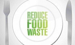 How to Make the Best Out of your Kitchen Waste